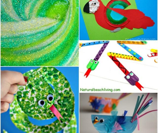 Amazing Rainforest Crafts Kids Can Make Natural Beach Living