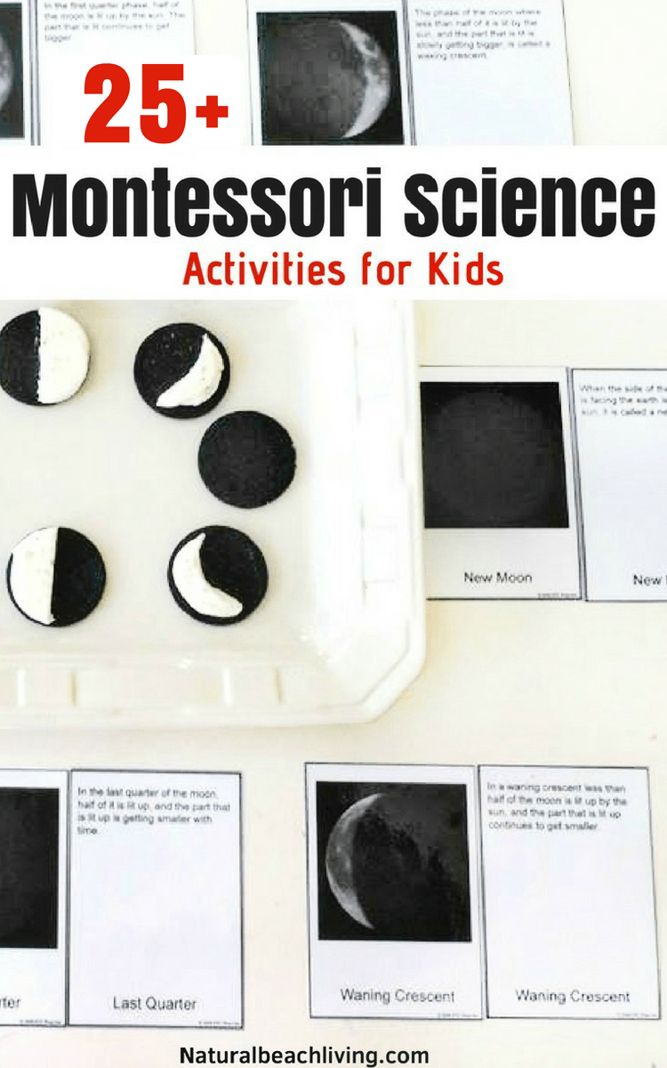 12 Months Of Montessori Learning Natural Beach Living