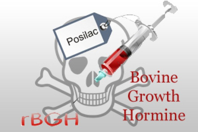 Image result for monsanto bovine growth hormone