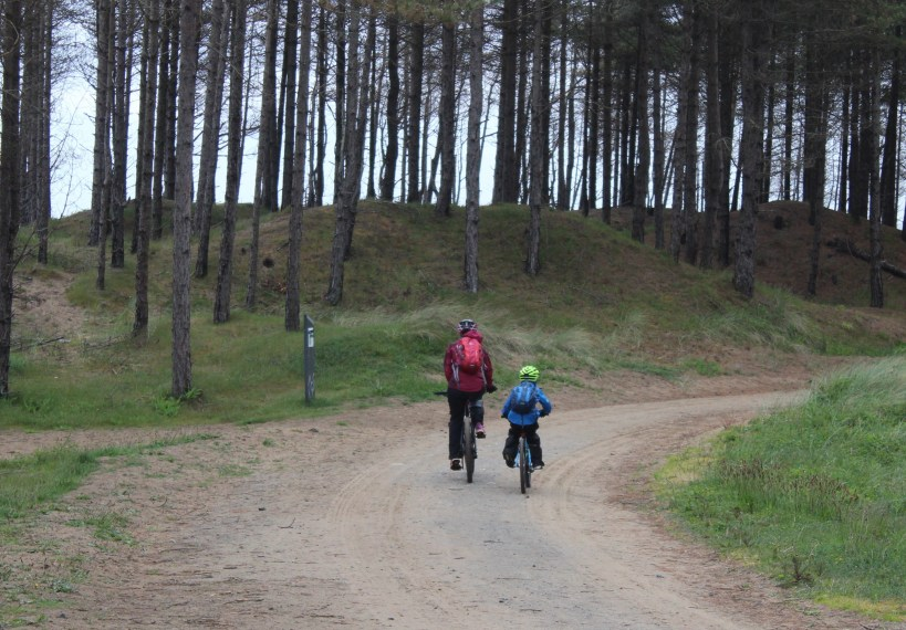 Man and child cycling in Newborough Forest