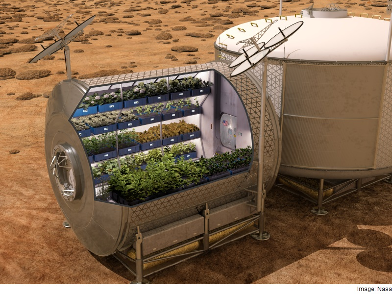 ISS Astronauts to Sample Leafy Greens Grown on Space ...