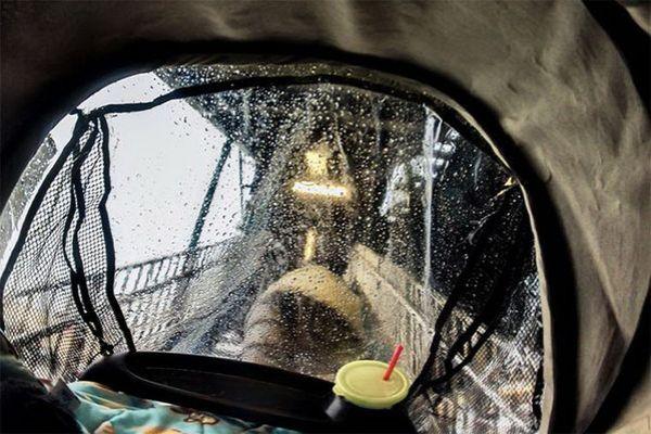 Как видят мир малыши в коляске. Фото | Твои новости