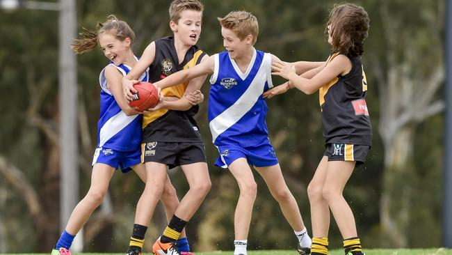 AFL South East asking Frankston and District Junior ...