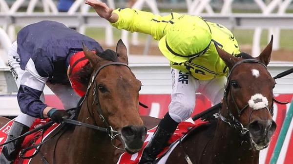 Melbourne Cup Form Guide 2017: Odds and tips for all ...