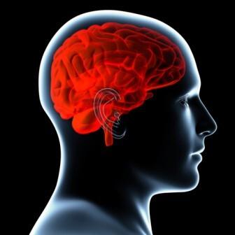foto bij artikel Vermijdt een goede conditie op je veertigste dat je hersenen later krimpen?