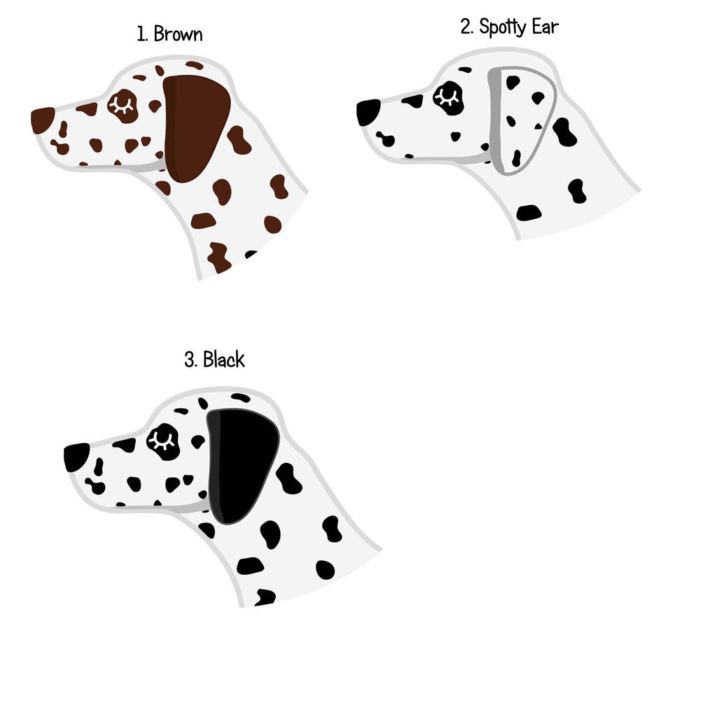 Dalmatian Personalised Dog Name Id Tag By Hoobynoo
