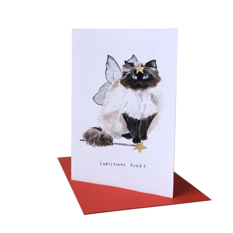 Christmas Furry Cat Christmas Card By Blank Inside