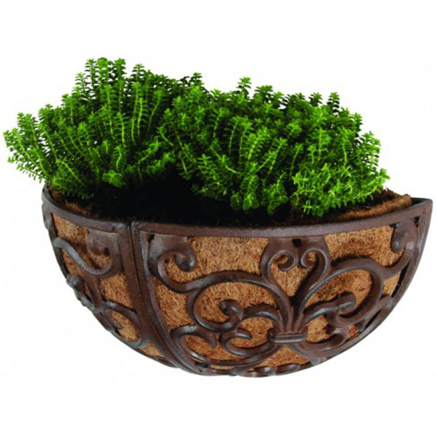 Cast Iron Wall Planter / 36cm By Garden Selections ... on Iron Wall Vases id=91941