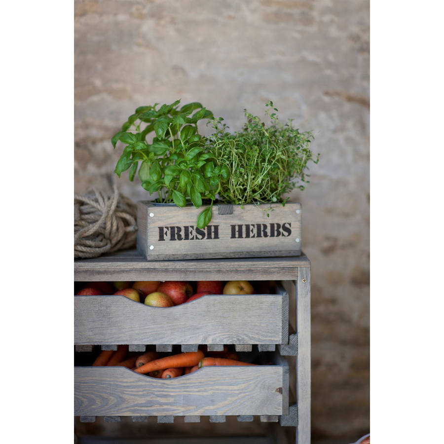 Galvanised Vegetable Planters