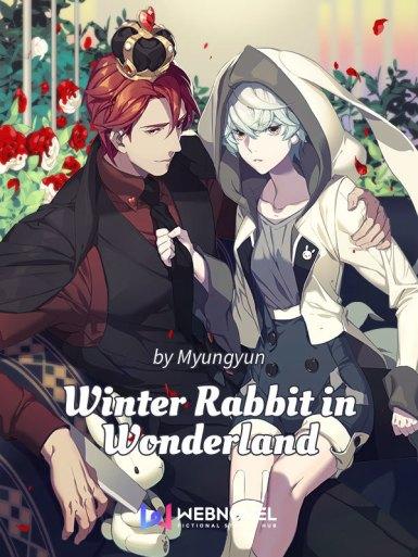 Winter Rabbit in Wonderland - Novel Updates