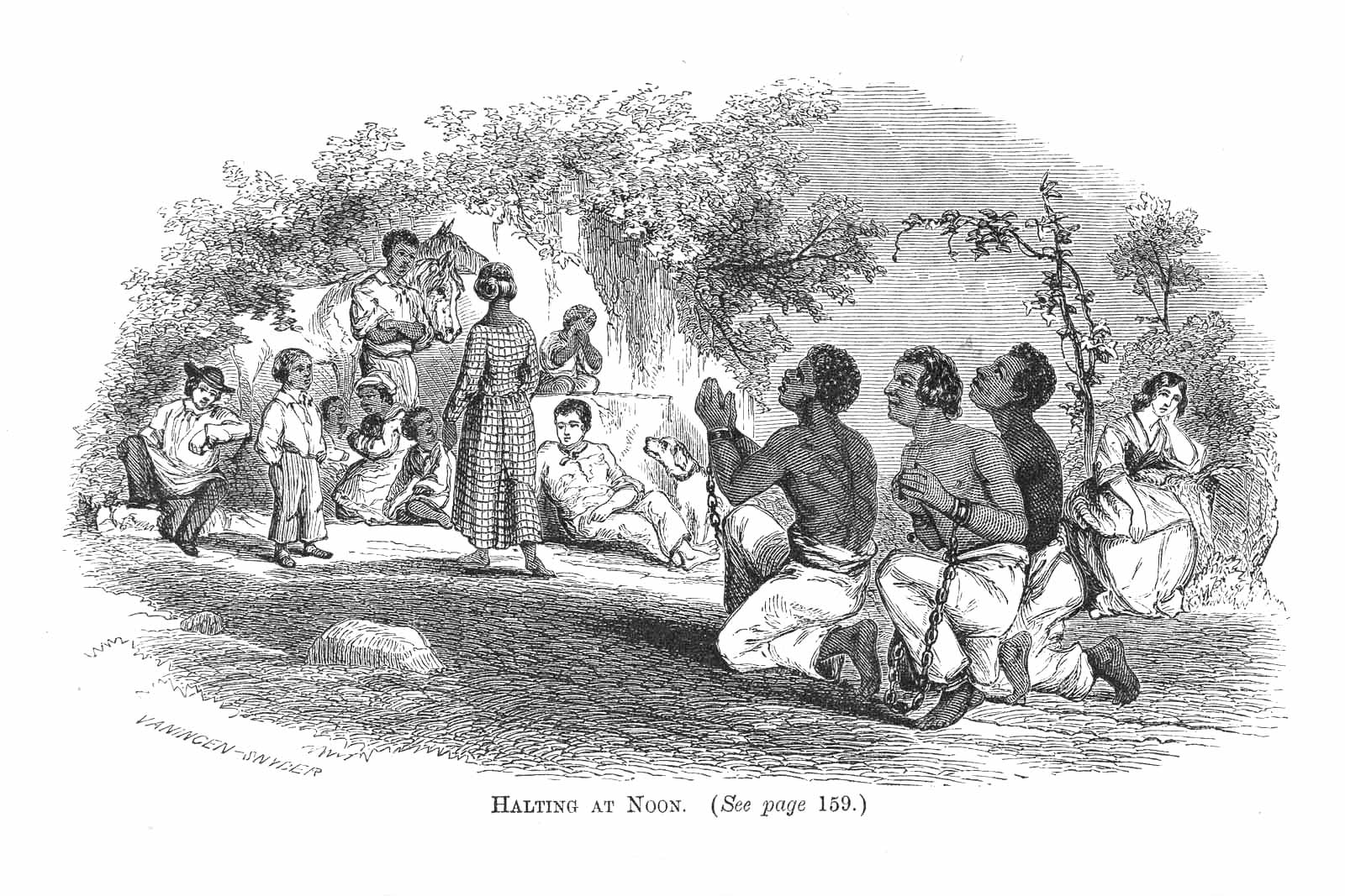 Slavery And The American University