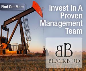 Blackbird Energy Inc
