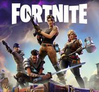 extras / covers / Fortnite-record.jpg