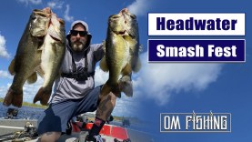 Fishing Lake Headwater in South Florida – The Bass Are Biting!