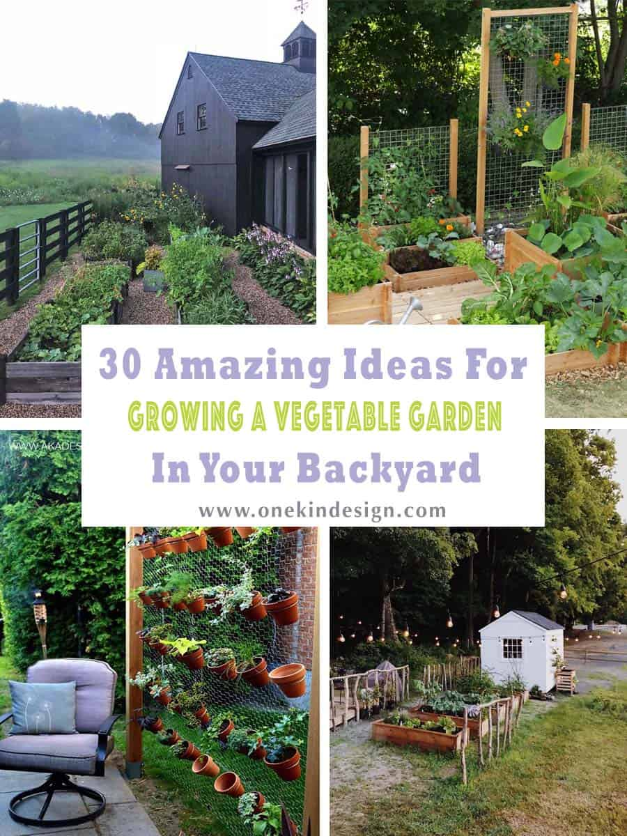 30 Amazing Ideas For Growing A Vegetable Garden In Your ... on Outdoor Vegetable Garden Ideas id=34544