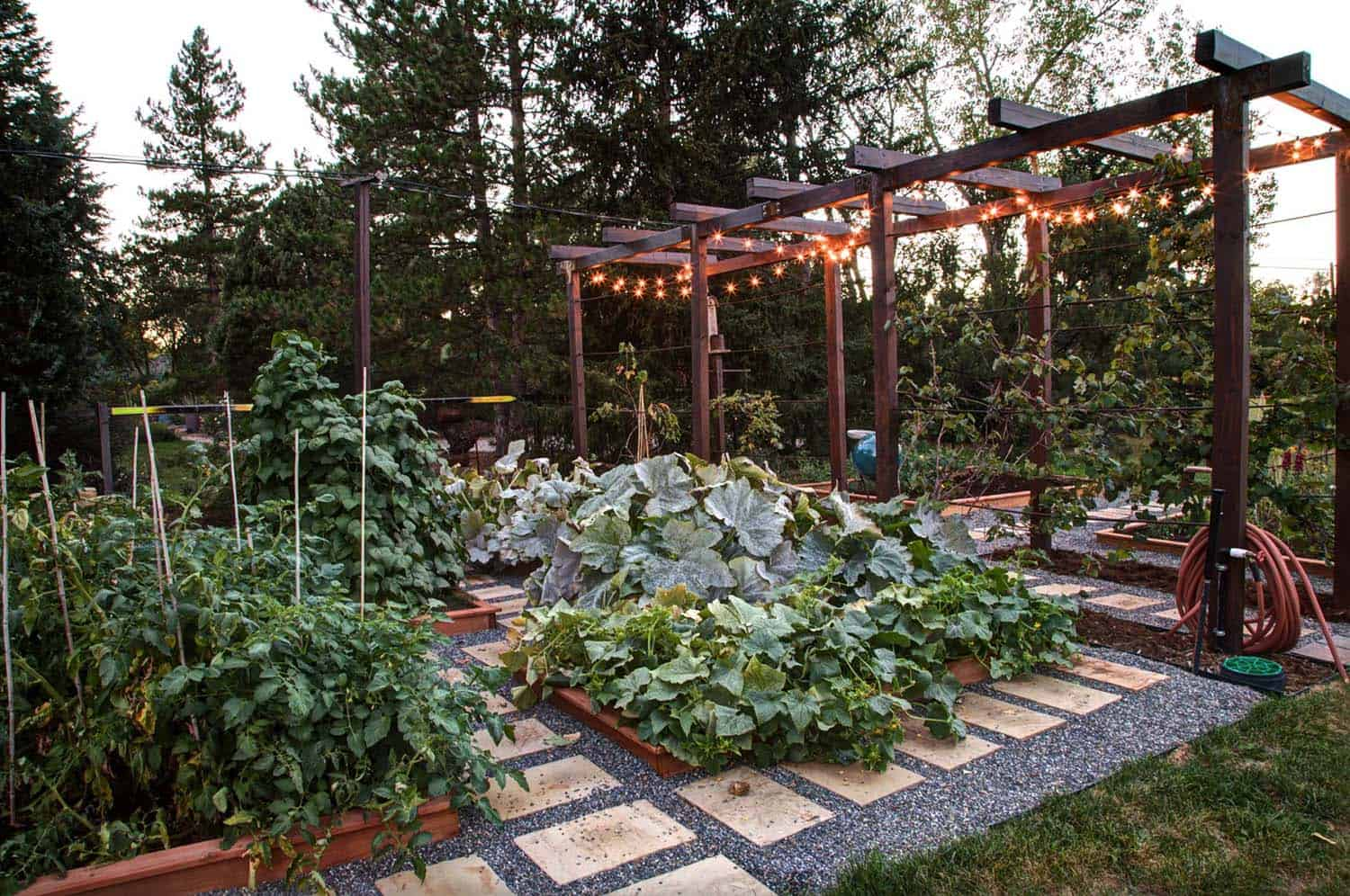30 Amazing Ideas For Growing A Vegetable Garden In Your ... on Outdoor Vegetable Garden Ideas id=95649