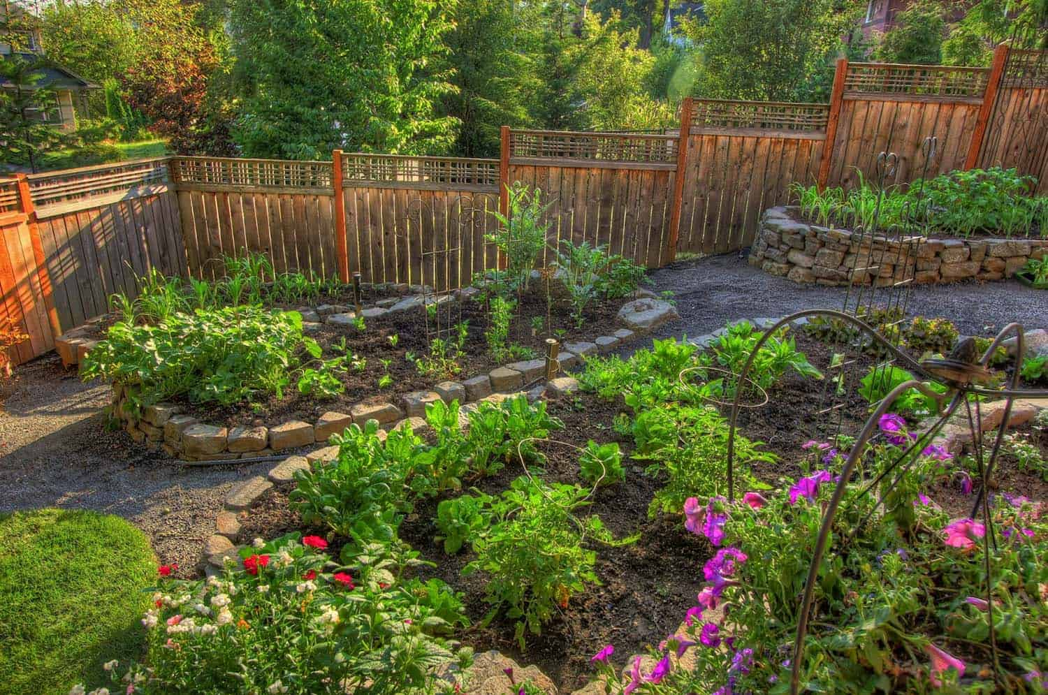 30 Amazing Ideas For Growing A Vegetable Garden In Your ... on Outdoor Vegetable Garden Ideas id=98109