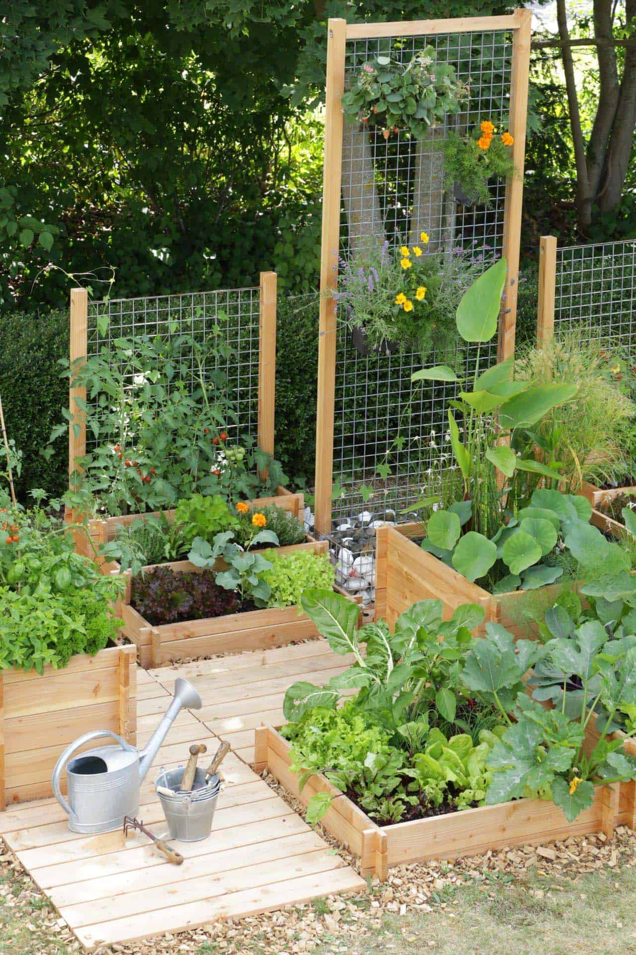 30 Amazing Ideas For Growing A Vegetable Garden In Your ... on Outdoor Vegetable Garden Ideas id=83459