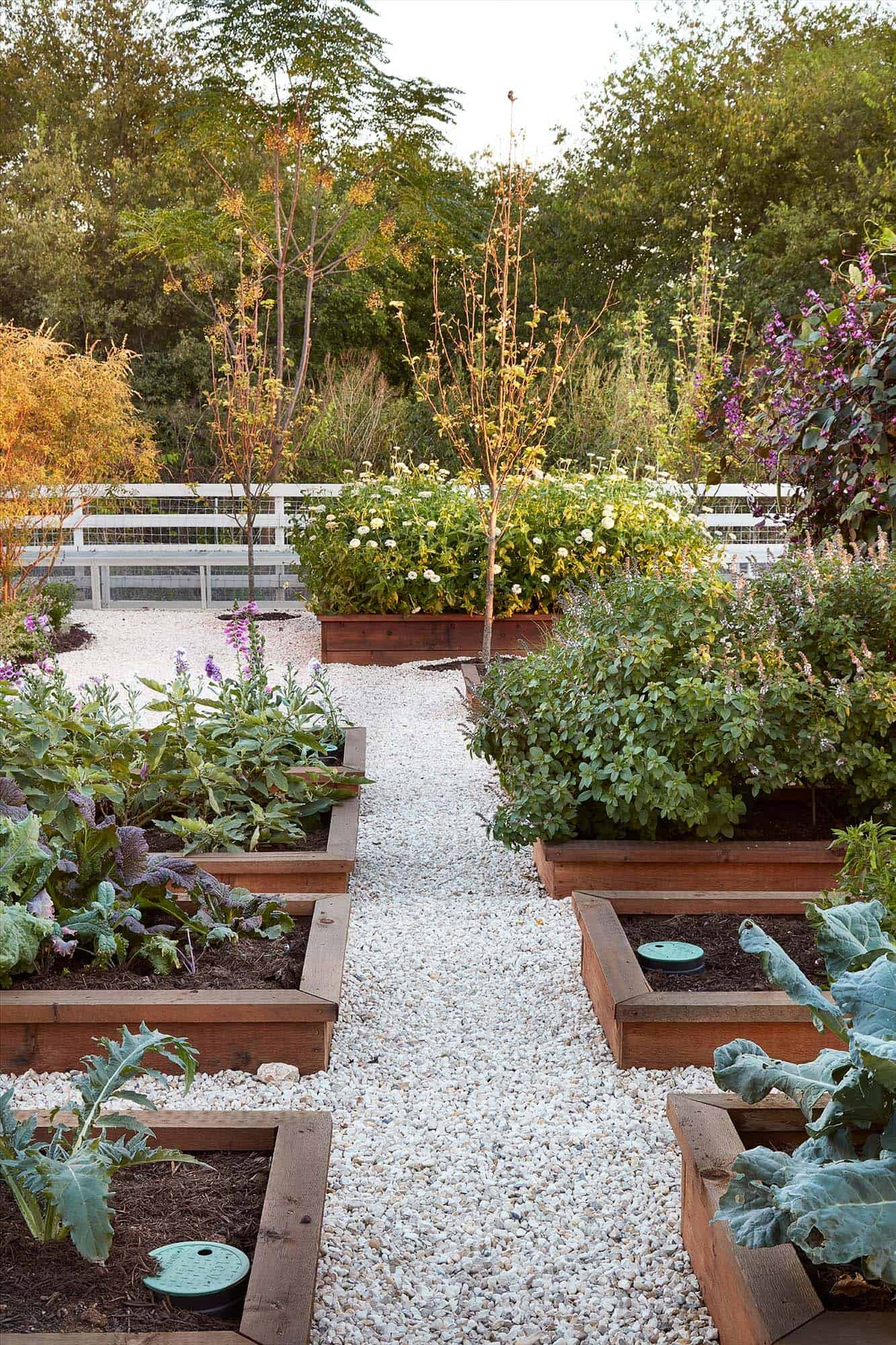 30 Amazing Ideas For Growing A Vegetable Garden In Your ... on Outdoor Vegetable Garden Ideas id=52702