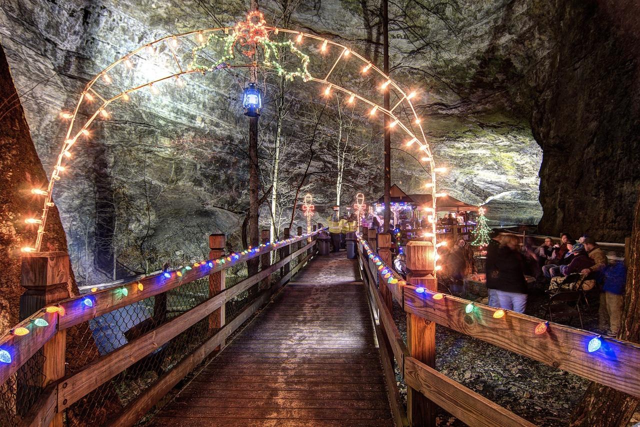 Northern Lights Kentucky