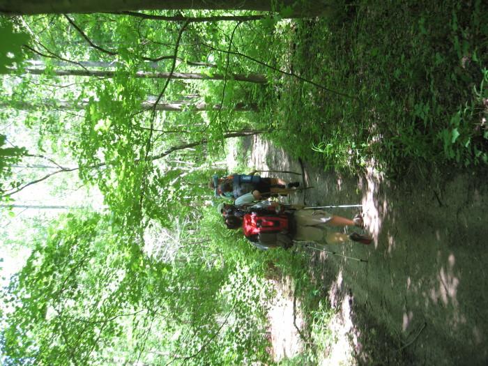 2-Knobstone Trail2