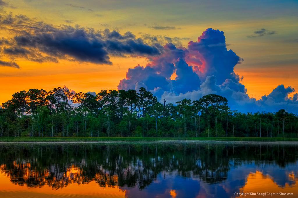Beautiful Sceneries That Totally Define Florida