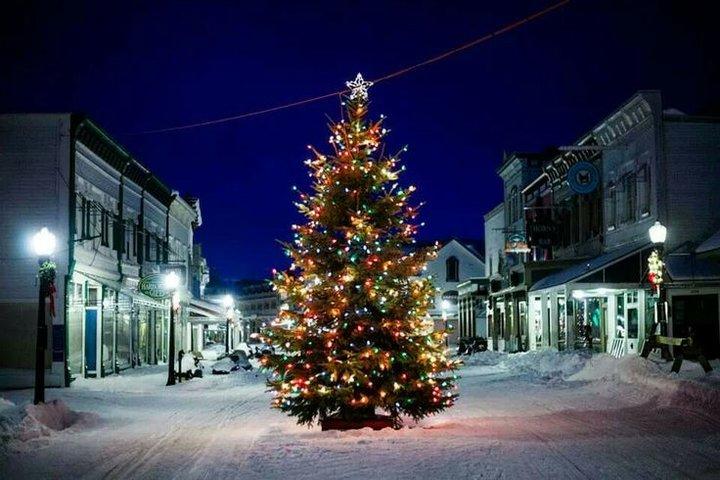 Christmas Lights Tampa