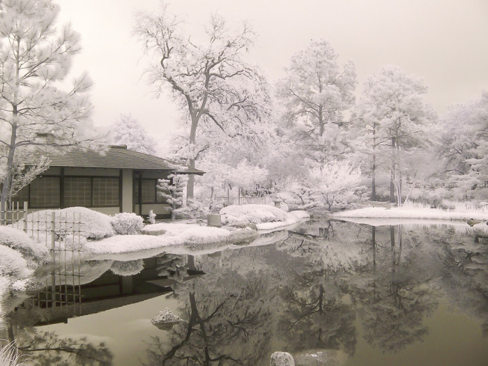 14 Beautiful Winter Scene In Texas
