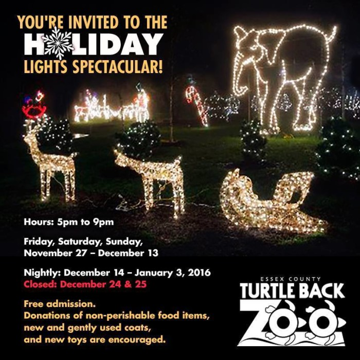 National Zoo Holiday Lights