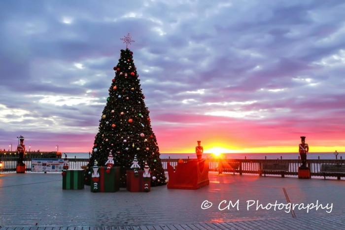 Christmas Lights Baltimore