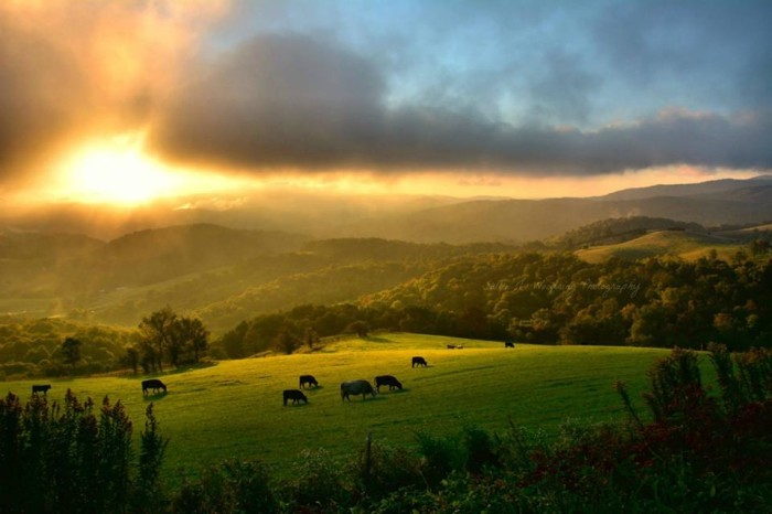 15 Incredible Photos Of Rural North Carolina