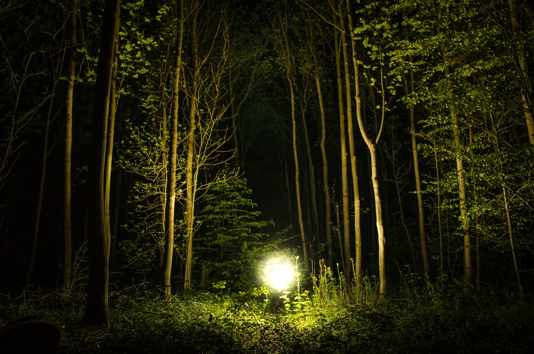 Ohio Northern Lights