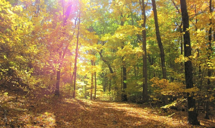 15. Penwood State Park (Bloomfield)