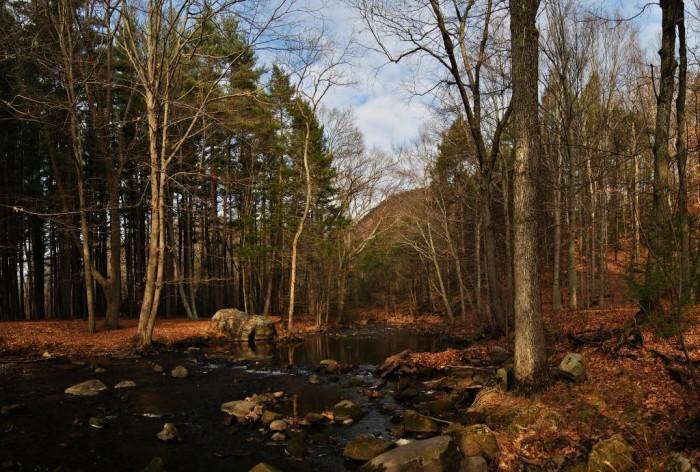 3. Sleeping Giant State Park (Hamden)