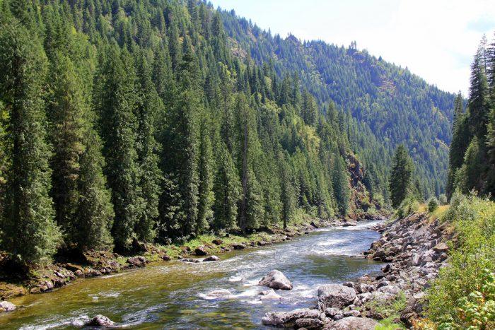 Grangeville Fishing Idaho