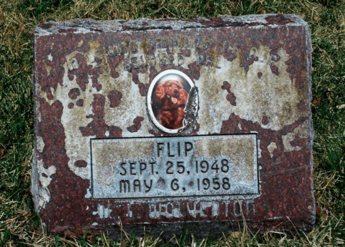 7. Denver Pet Cemetery and Crematory