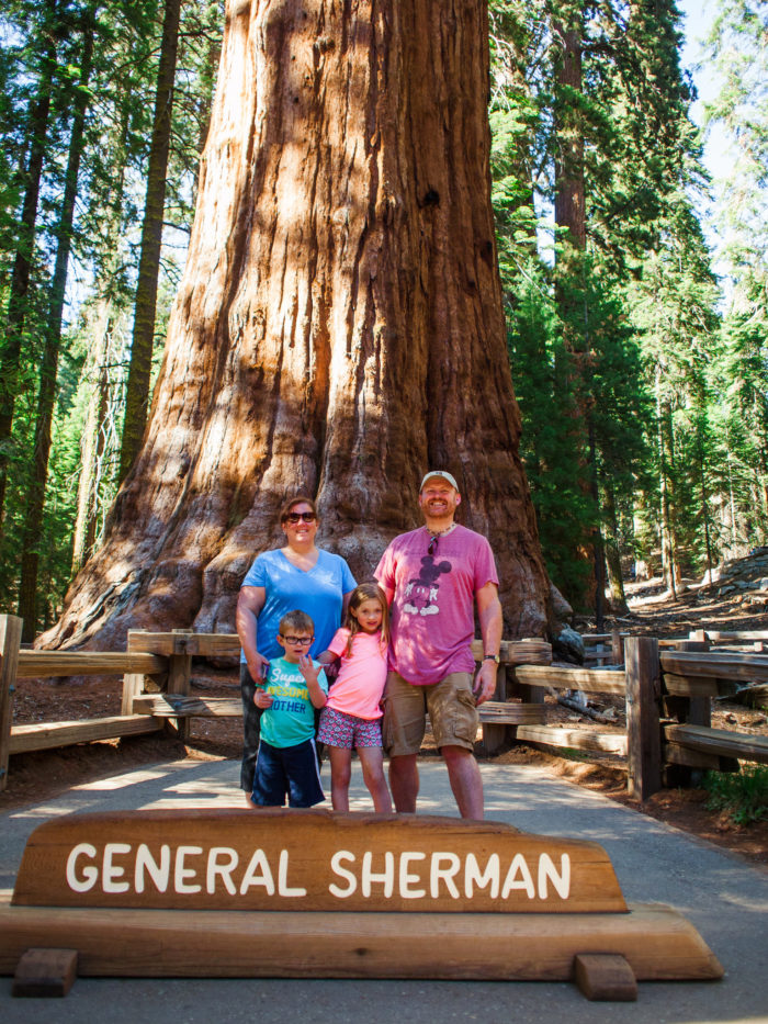 7. Give General Sherman a hug.