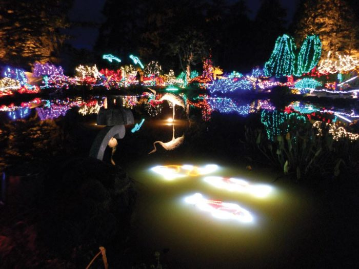 Zoo Lights Address