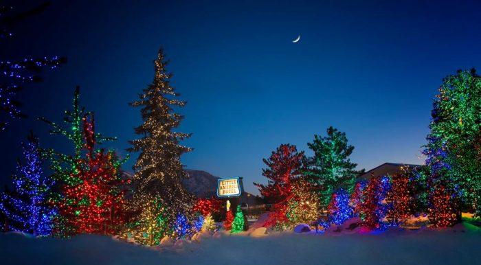 12 Best Arizona Christmas Light Displays