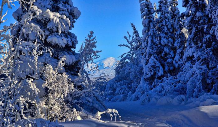 Beautiful Alaska Northern Lights