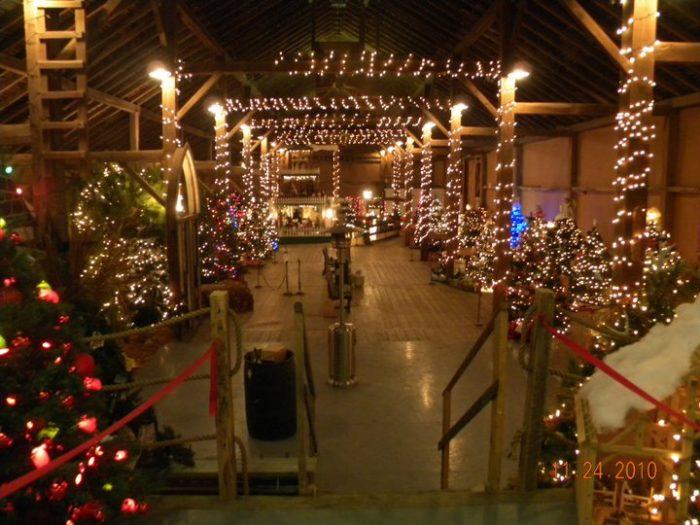 Holiday Time Lights