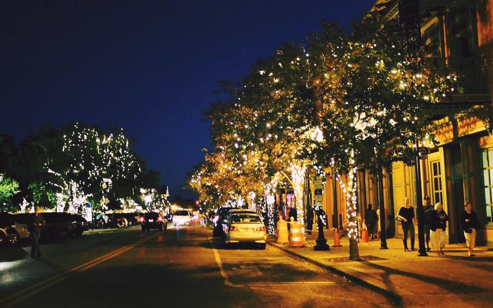 Memphis Zoo Christmas Lights