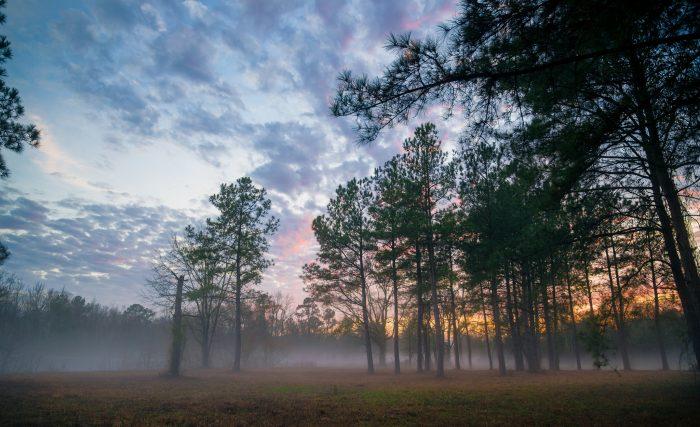 Ten Most Dangerous Cites In North Carolina In 2016