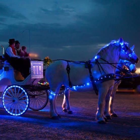 Blue Light Car