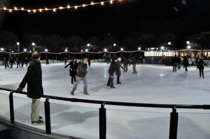 Christmas Lights Dc Zoo