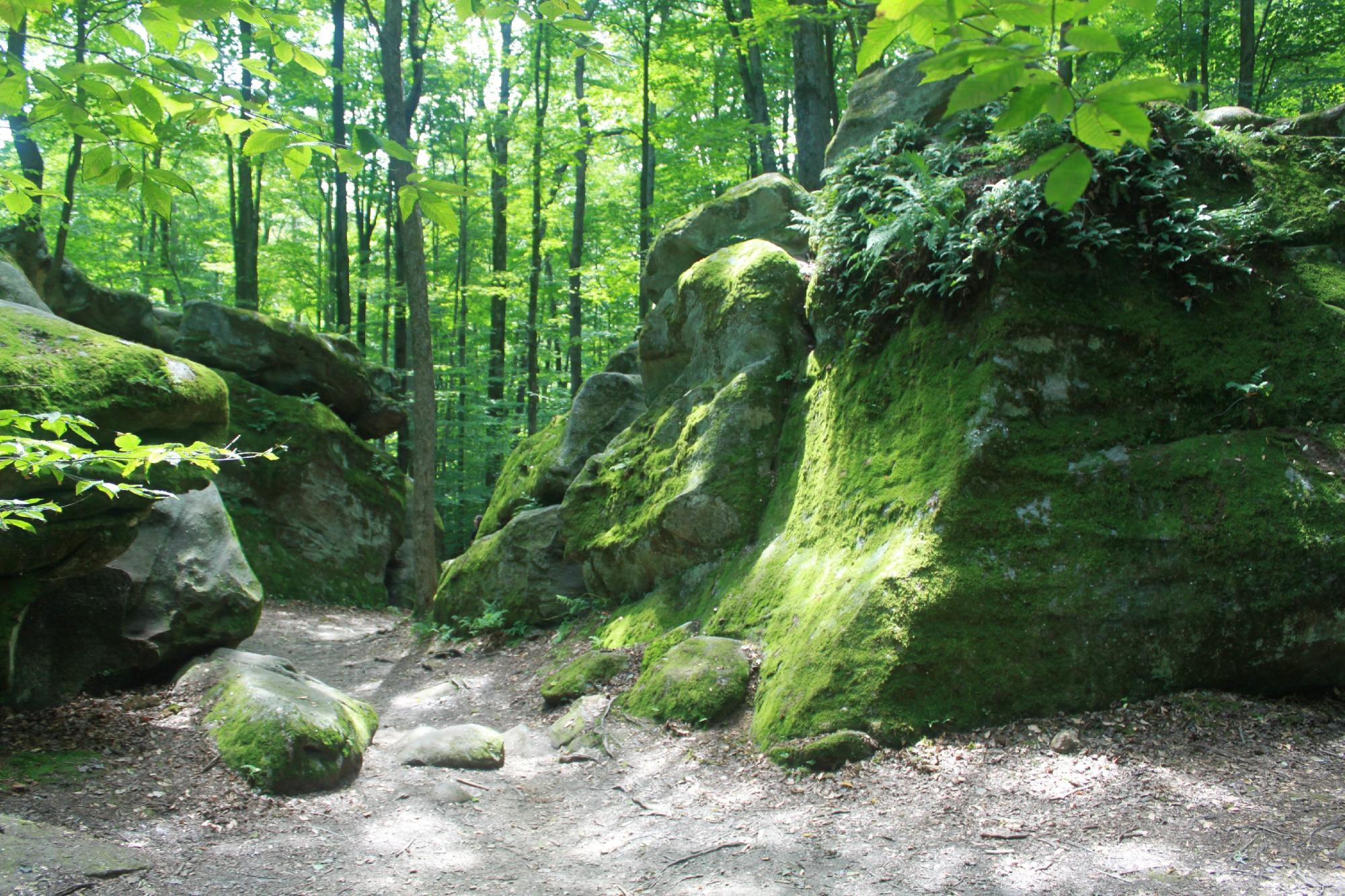 Thunder Rocks Is One Of New York S Oddest Geological Wonders