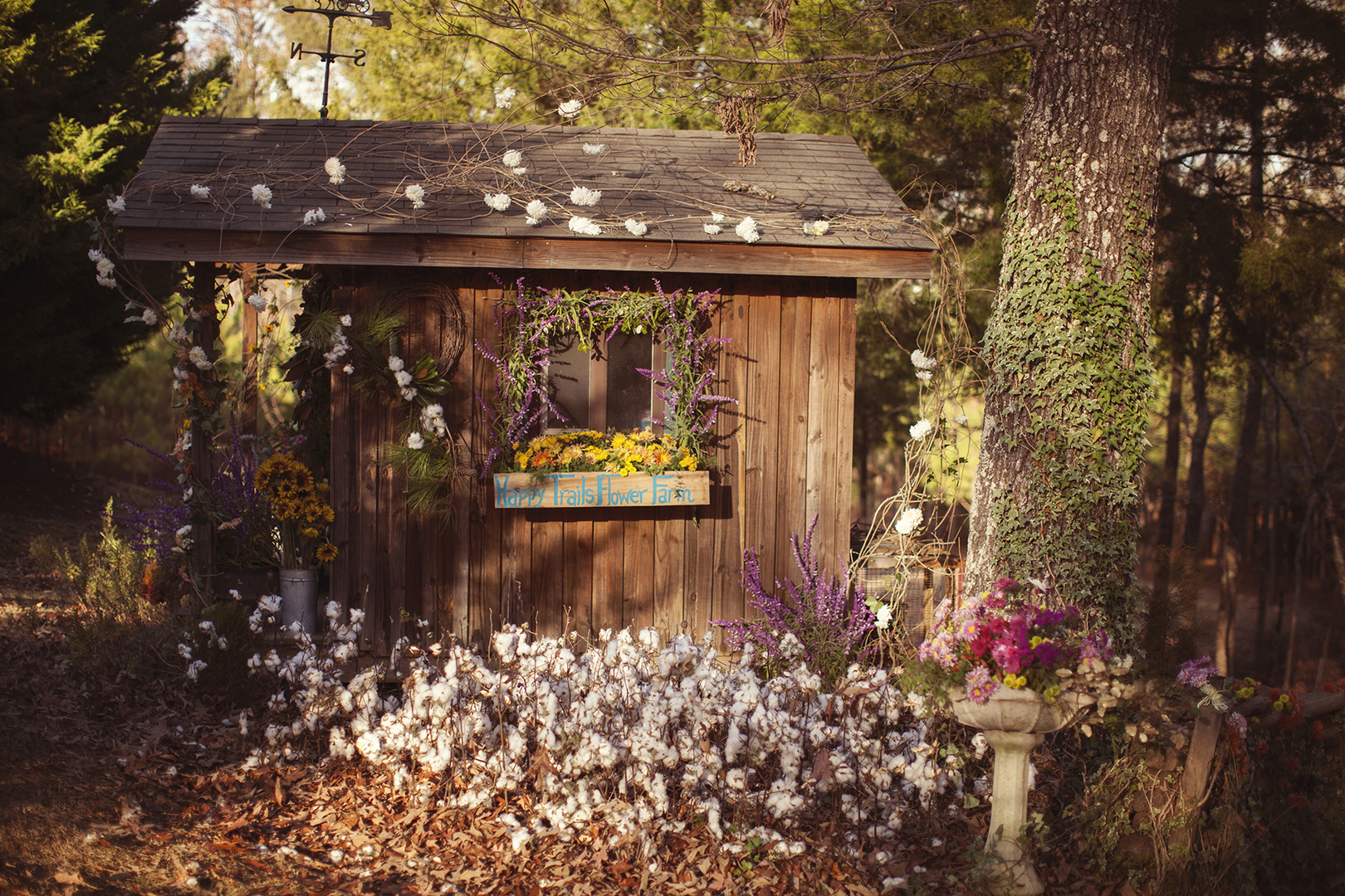 Happy Trails Flower Farm In Mississippi Is A Must Visit This Spring