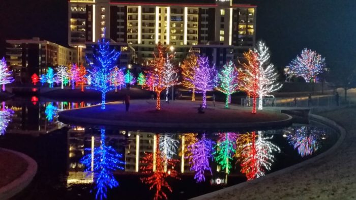 Houston Christmas Lights