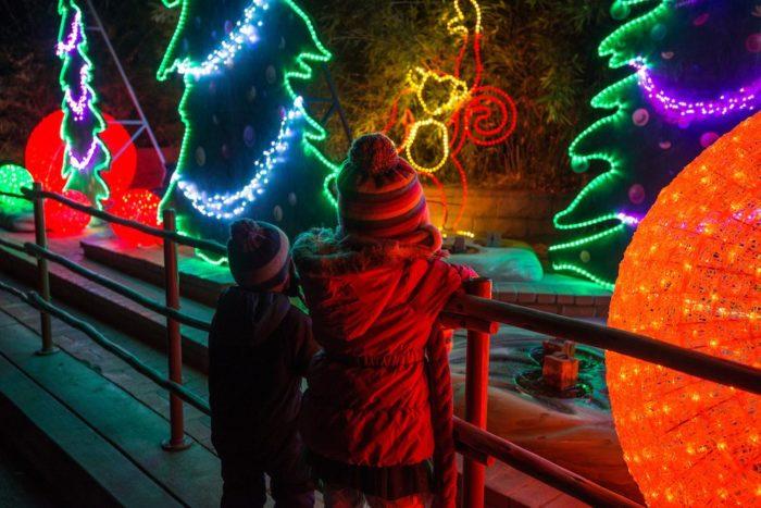 La Zoo Lights Dates