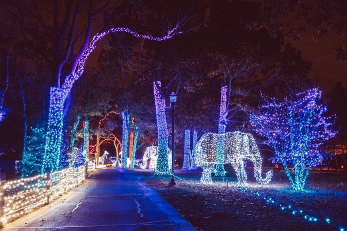 Zoo Wild Lights